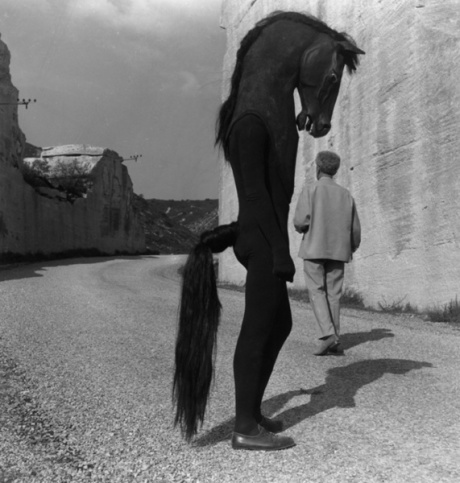 jean_cocteau_croise_l_homme_cheval_image_full